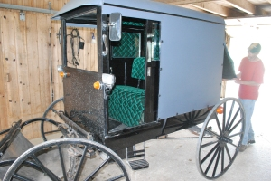 Pimpin' Amish Buggy