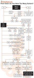 GuitarSquid.com | Flow Chart: Do You Have Too Many Guitars?