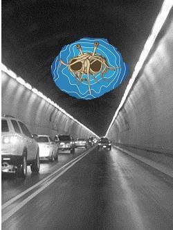 Flying Tunnel Monster