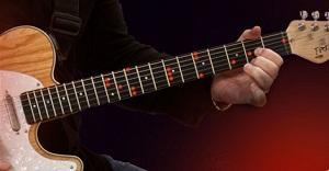 Fretlight Guitar