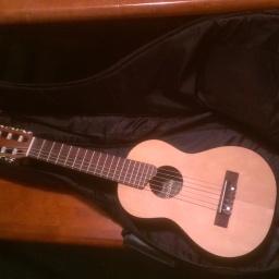 Free Gig Bag From Guitar Center! (1)