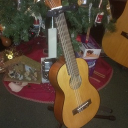 Free Stand From Guitar Center! (1)