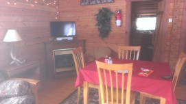 Forest Ridge Campgroundsa and Cabins   Allegheny Cabin - TV & Table