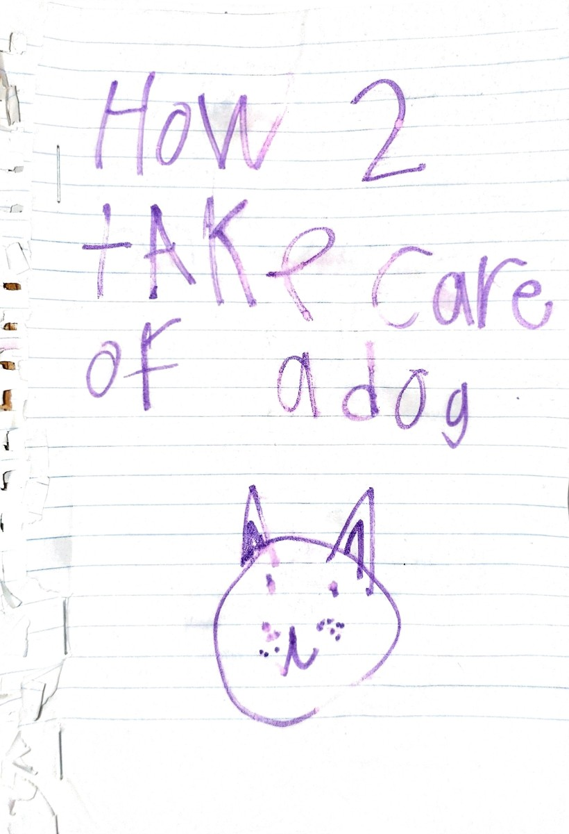 How 2 Take Care of a Dog.