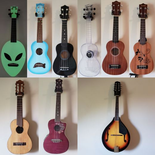 The Family Ukuleles & Mandolin